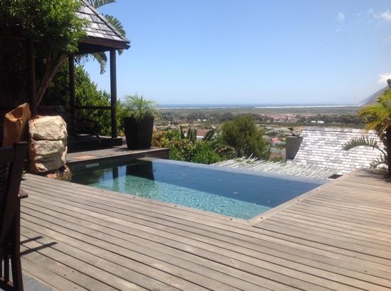 African Violet : honeymoon suite view