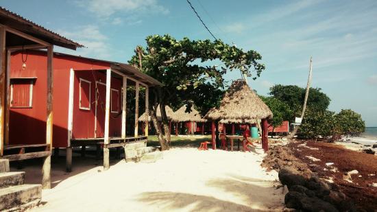 Carlito's Sunrise Paradise: Cabins at carlitos place