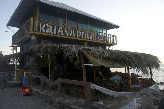 Red Mangrove Galapagos Camping