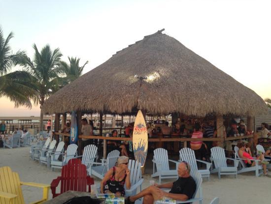 TT's Tiki Bar: Tiki bar