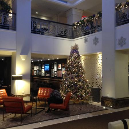 lobby christmas decoration picture of the lexington new. Black Bedroom Furniture Sets. Home Design Ideas