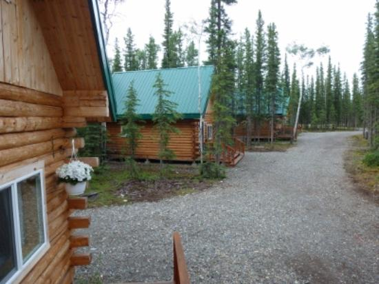 Caribou Cabins: Close to town but secluded