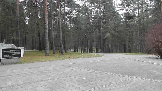 Paneriai (Ponar): Начало мемориала - вход в Паняряйский лес