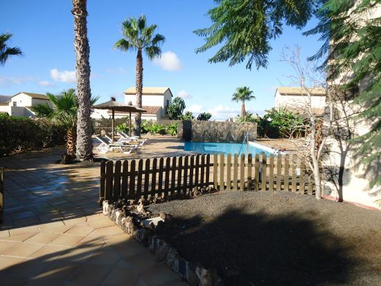 Hotel Boutique & Villas Oasis Casa Vieja : Piscine