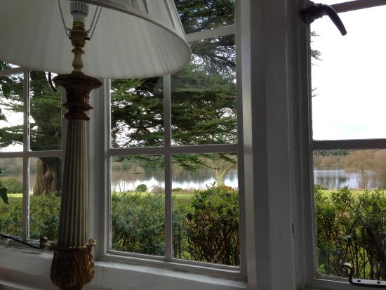 Champneys Forest Mere: View of the lake from the lounge