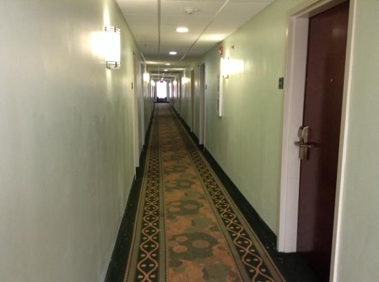 Comfort Inn & Suites: Hallway, glossy paint touch ups on top of flat paint. It looks worse in person.