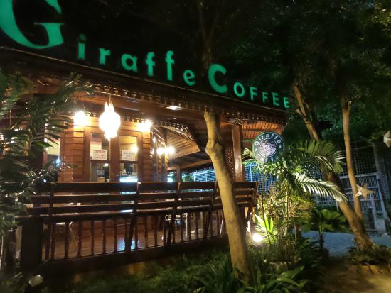 Cafe at the front - Picture of Chiang Mai Night Safari, Chiang Mai - TripAdvisor