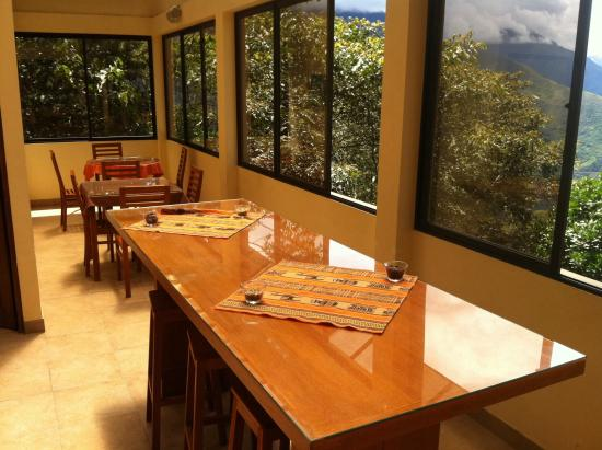 Coroico, Bolivia: Tasting room with a view