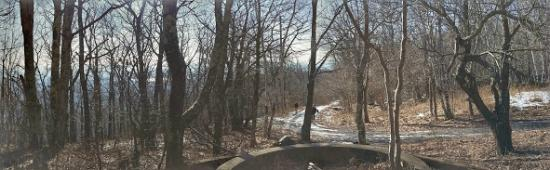 Overlook Mountain: Trail View from Hotel