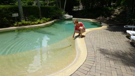 Montville Mountain Inn Resort: Pool