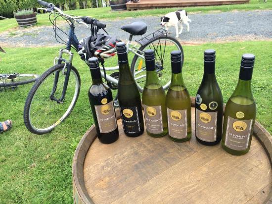 Wined About Bike Tours: Te Whai Bay Wines