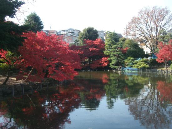 Higashiyama Zoo & Botanical Garden