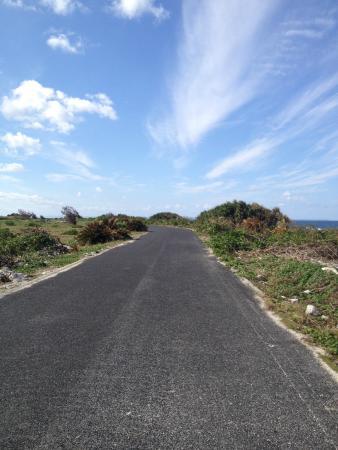 Kikaijima Island: 青空と誰もいない1本道
