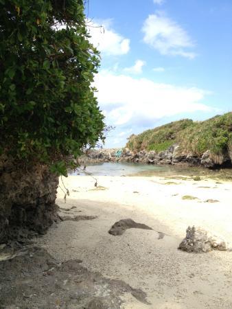 Kikaijima Island: 秘密のビーチ