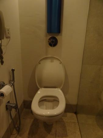 The Central Court Hotel: Toilet