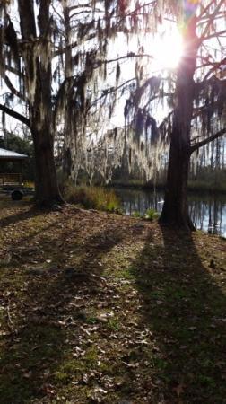 Live Oak Landing, an RVC Outdoor Destination: the river