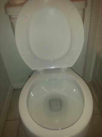 La Mesa Motel : Had to show how clean toilet is!