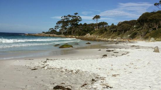 Bay of Fires Character Cottages: Binalong Bay