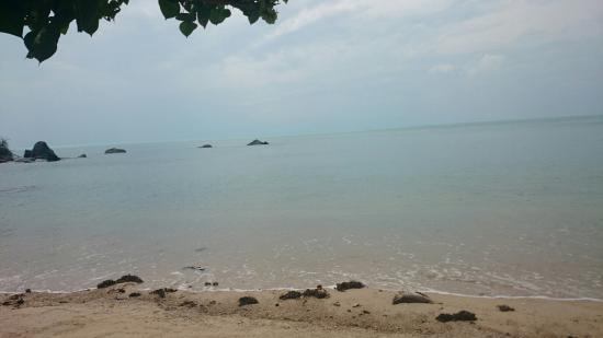 The Scenery Beach Resort: Beach
