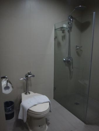 Citylight Hotel : shower