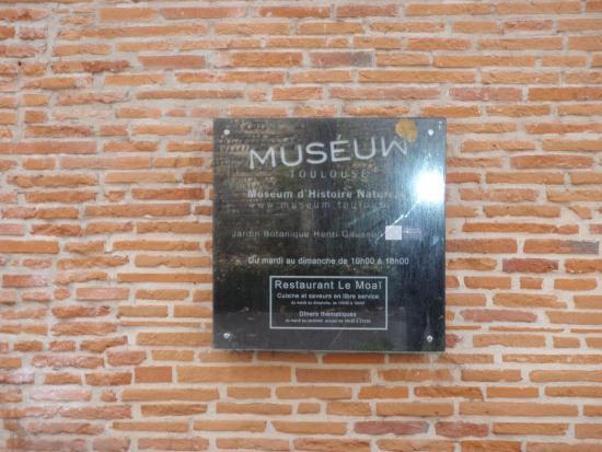 Museum of Natural History: Musée d'histoire naturelle de Toulouse