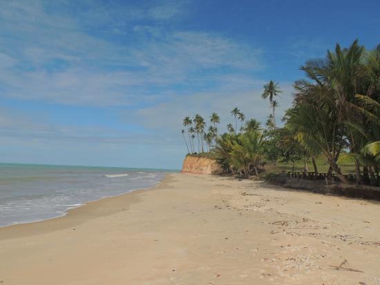 Imbassuaba Beach: Praia