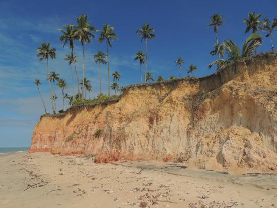 Imbassuaba Beach: Falesias