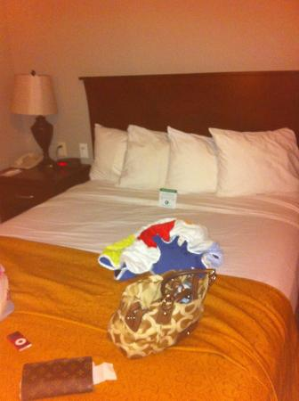 Quality Inn Chandler: queen bed