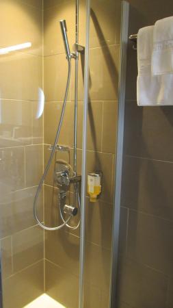 Best Western Plus Hotel Zuercherhof : Bathroom view 1