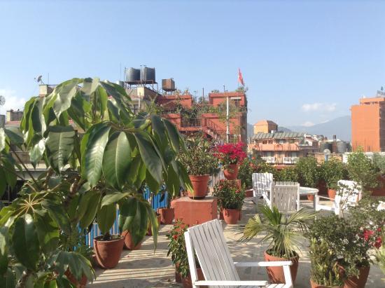 Khangsar Guest House: hotel terasse