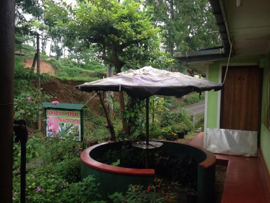 Suwadivi Ayurveda Health Care: Super massage détente !