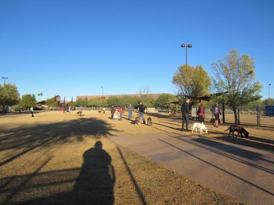 ‪Chaparral Dog Park‬