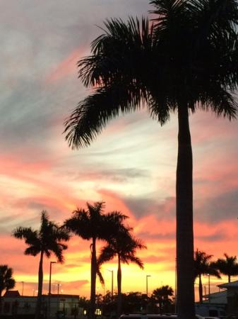 Hilton Garden Inn Fort Myers Airport / FGCU : Sunset... need i saw more.