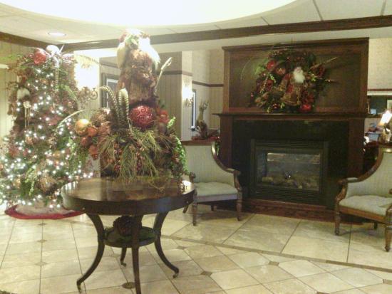 Hampton Inn & Suites Salisbury/Fruitland : Beautiful Decorations!