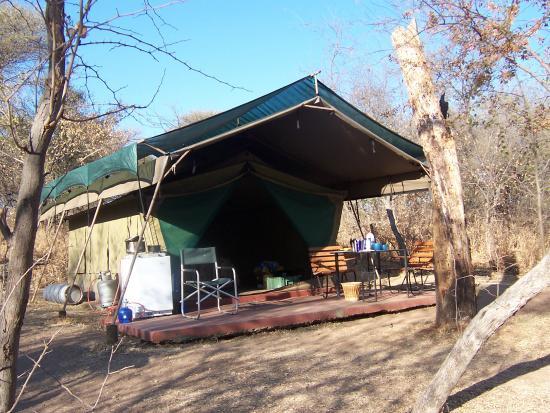 Borakalalo National Park, แอฟริกาใต้: Permanent Tent