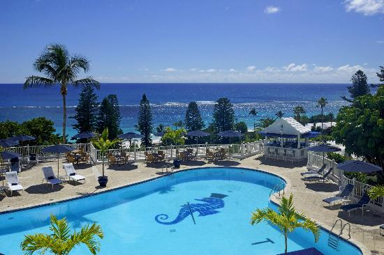 Elbow Beach, Bermuda: Pool at Elbow Beach