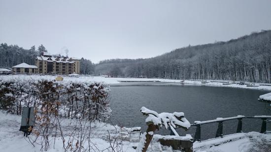 Bukhta Vikingiv : Hotel and the lake