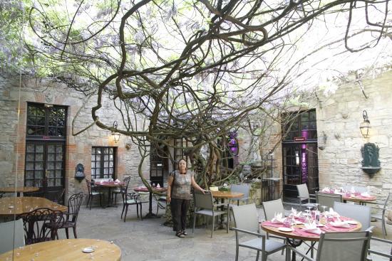Hostellerie du Vieux Cordes : Wisteria