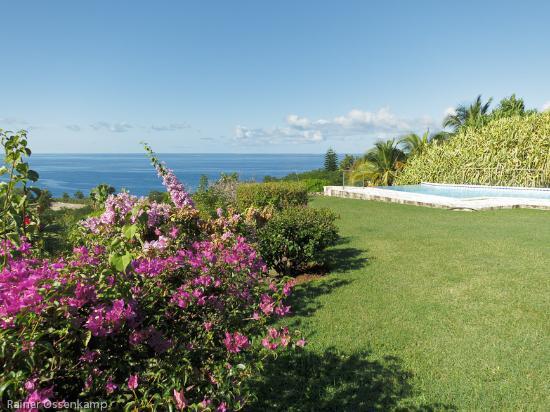 Villa Rayon Vert : Garten und Blick
