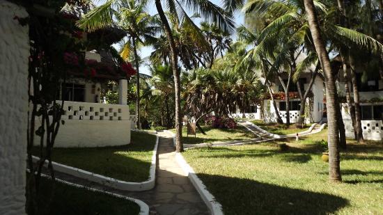 Barracuda Inn: Stradina e bungalow/stanze del villaggio