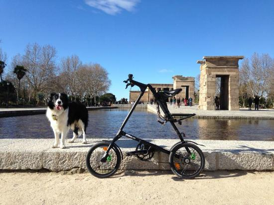 Mobeo Smart Transport : All types of bikes to enjoy Madrid