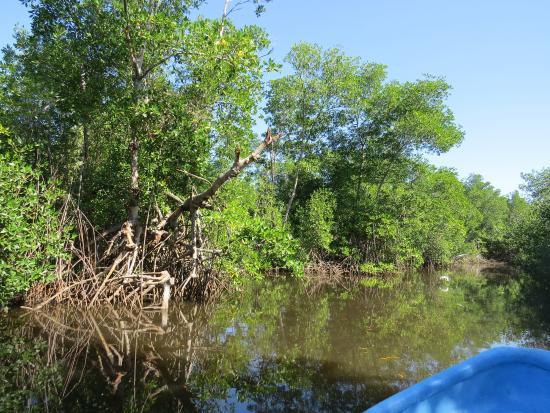 Vapues Nicaragua Tours: Juan Venado Nature Reserve