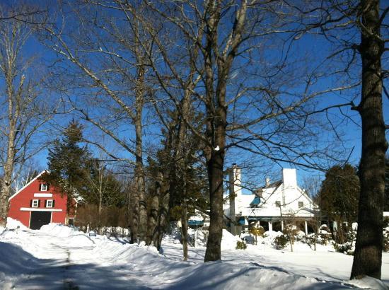 Clay Hill Farm: A snowy morn...