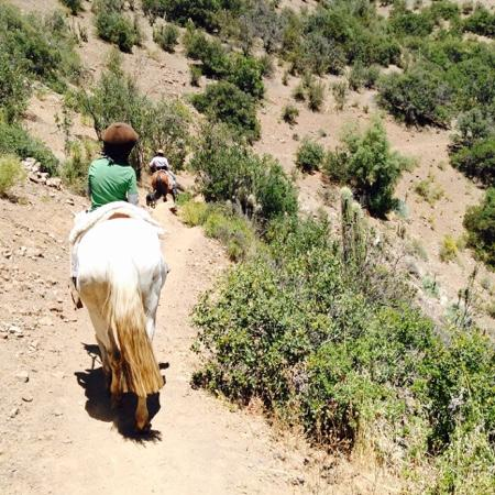 Horse Riding Chile: Dream comes true for 7-year-old!