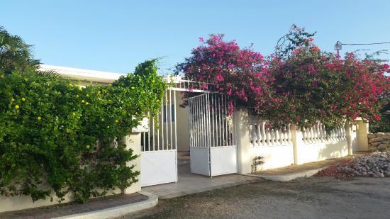 Pauline's Apartments Aruba: front entrance