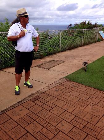 Best of Kauai Tour : Domi  Showing us Kauai