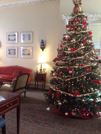La Reserve Center City Bed and Breakfast : All decorated for Christmas!