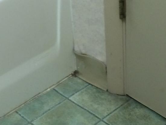 Green Valley Motel: Bathroom