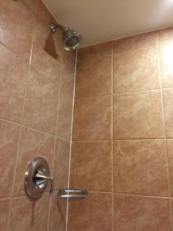 Holiday Inn Frisco - Breckenridge: Pretty clean shower.