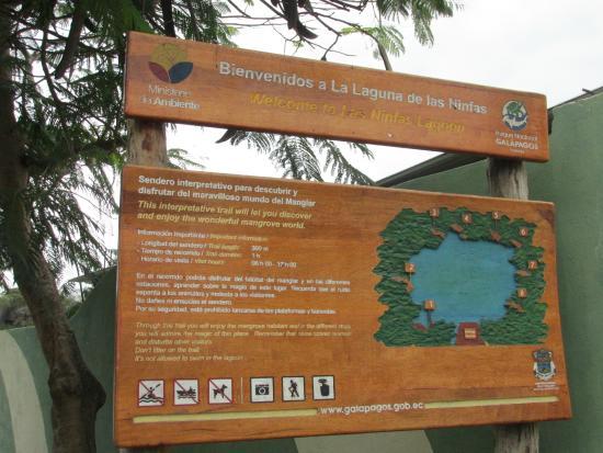 Laguna las Ninfas